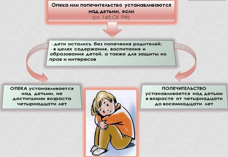 Возраст опекуна над ребенком в россии