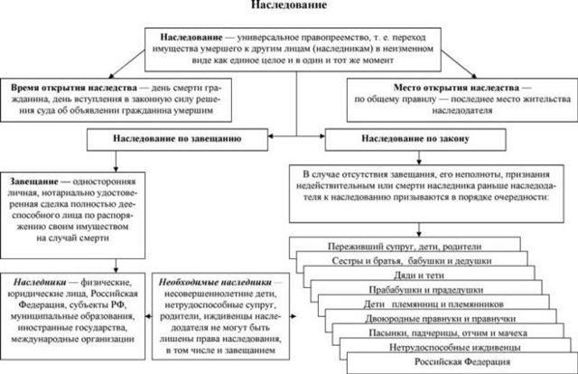 Сроки оформления наследства после вступления в наследство