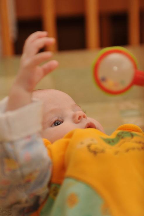 усыновление ребенка из роддома