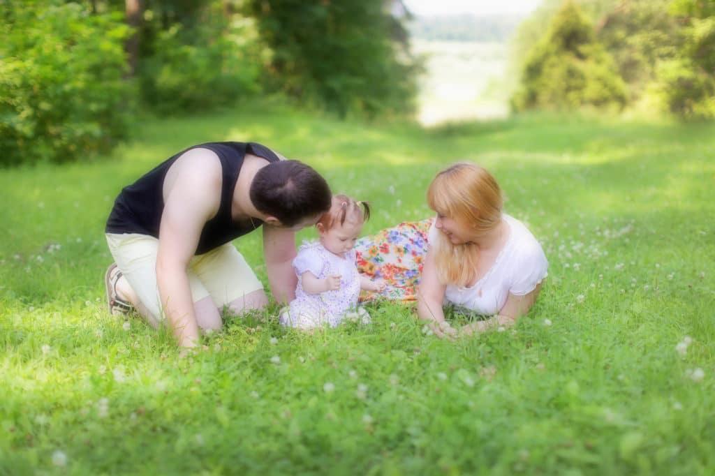 Земельный участок за 3 ребенка в 2020