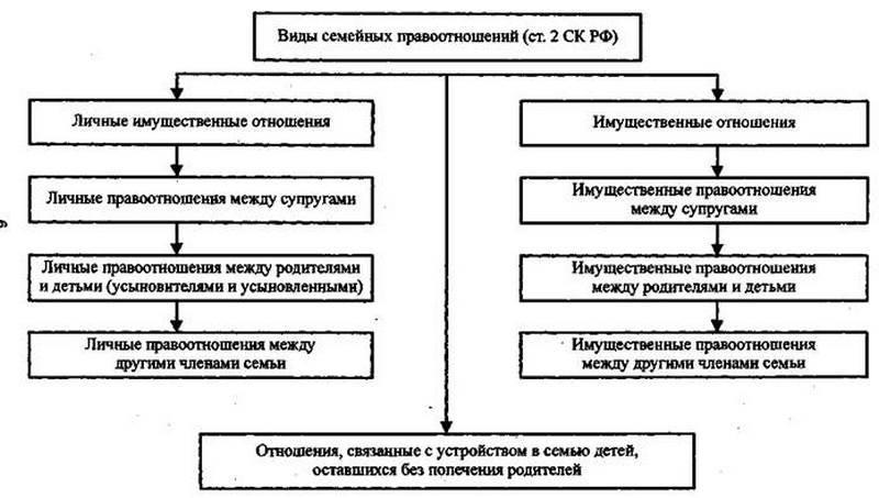 Правила усыновления детей в россии в 2020 г.