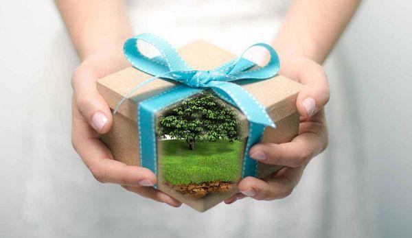 Оформление дарственной на дом и землю: пошаговая инструкция