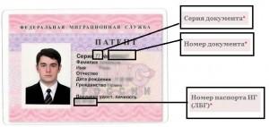 Миграционный форум санкт-петербурга