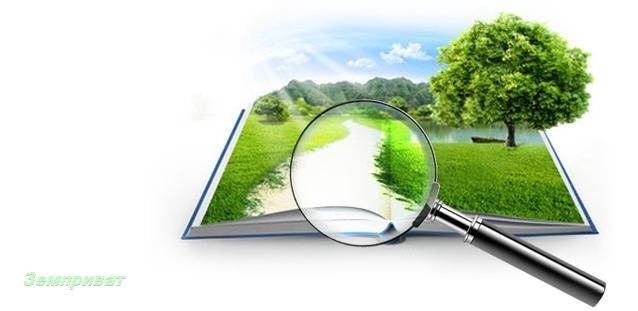 Как заказать справку о кадастровой стоимости земельного участка или недвижимости