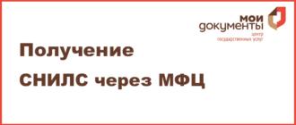Особенности восстановления снилс при утере в россии в 2020 году