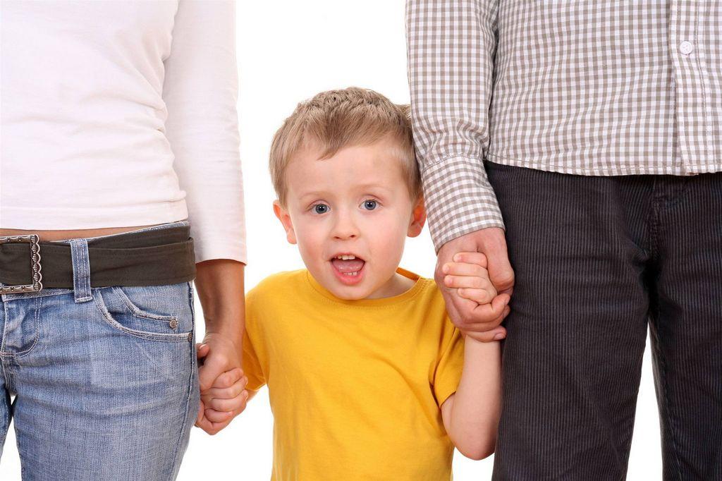 Формы и порядок устройства детей, оставшихся без попечения родителей