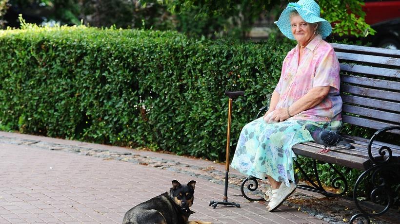 Бесплатные путевки в санаторий для пенсионеров: кому положены и очередность, куда обращаться
