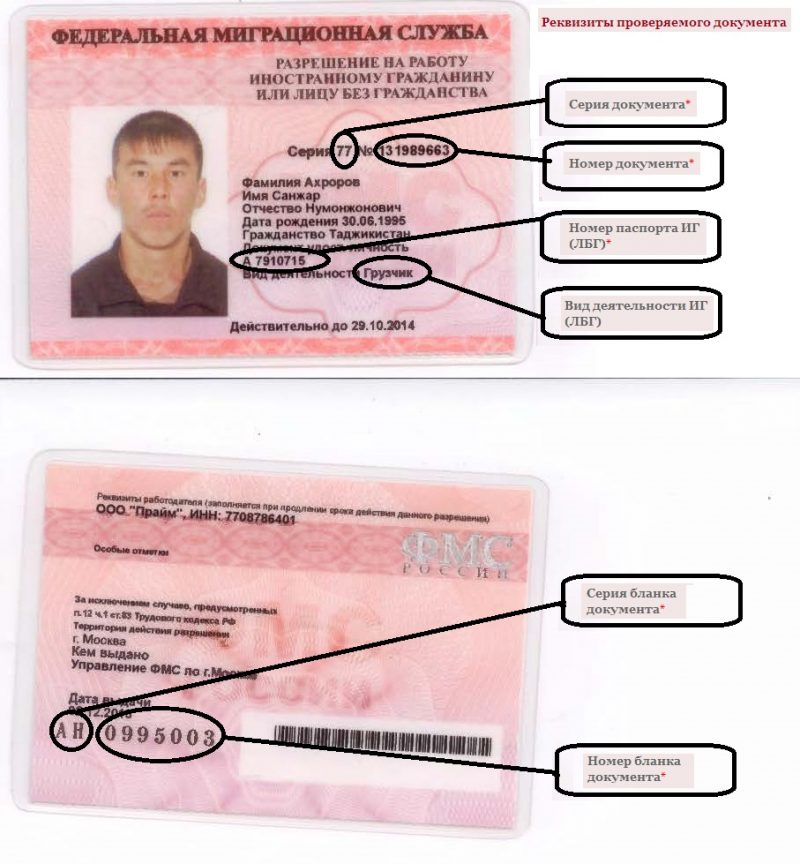 Как получить патент на работу для иностранных граждан в 2019 году