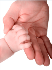 Как признать отцовство вне брака через загс