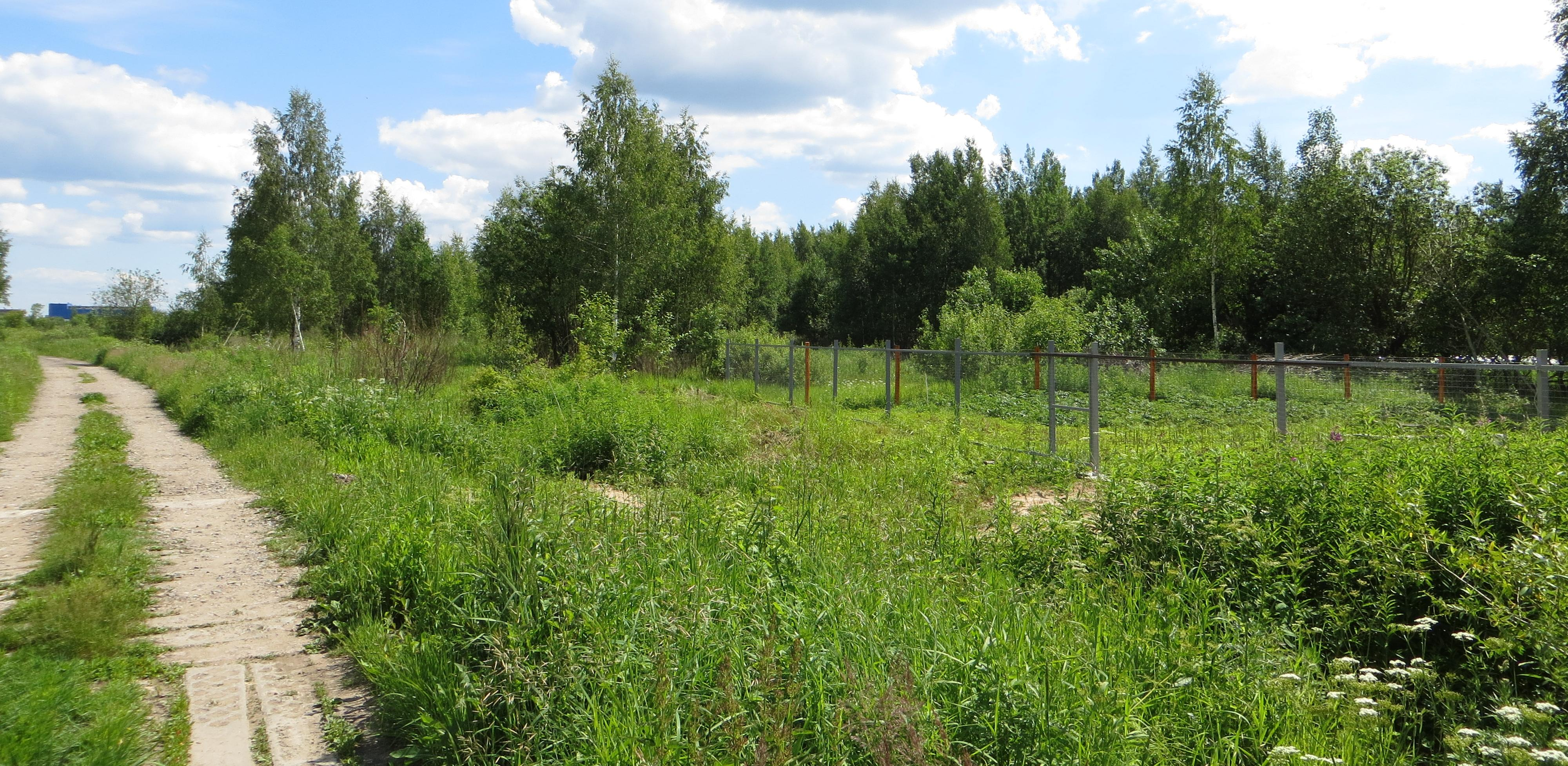 Оформление земельного участка в наследство: пошаговая инструкция