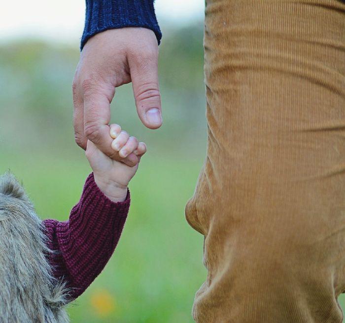 Алименты после лишения родительских прав в 2020 году