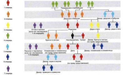 Очередность наследования по закону: схема 8 степеней родства, определяющих право на имущество после смерти близкого человека; круг прямых наследников без завещания и порядок вступления в наследство в рамках своей очереди через суд рф