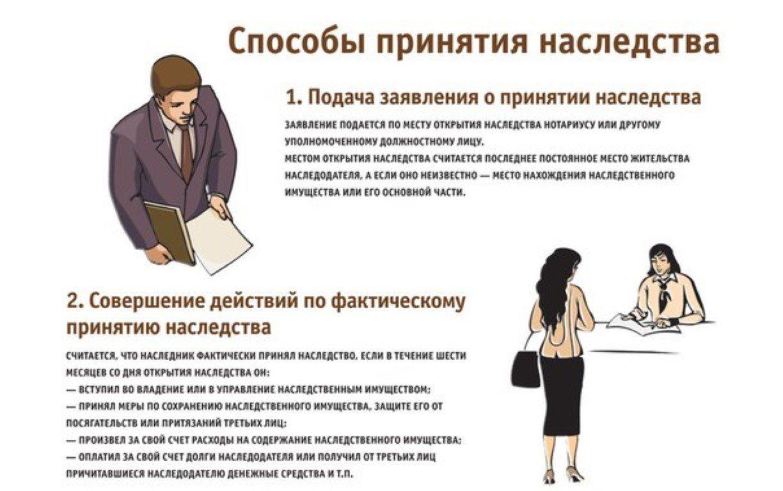 Наследование по закону и по завещанию. порядок принятия наследства, очередность наследников, сроки