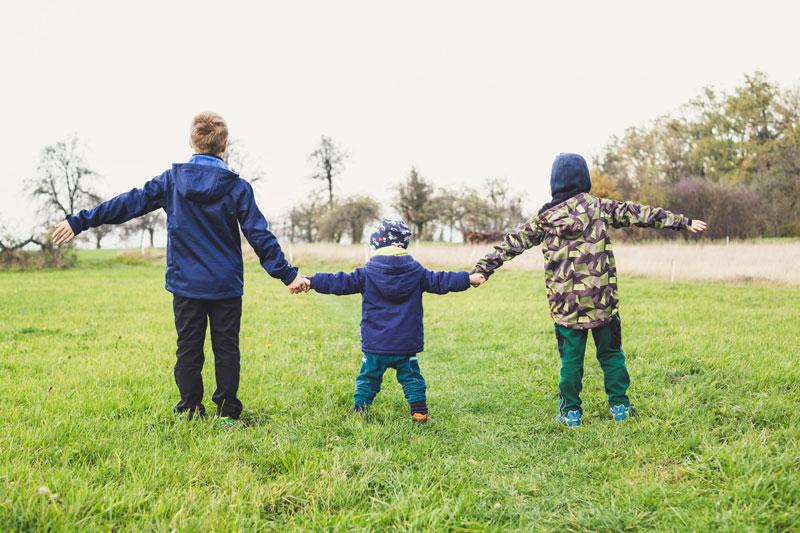 Земля многодетным семьям в москве и московской области в 2020 году
