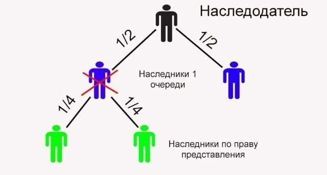 Доли в наследстве: определение частей имущества, положенных наследникам