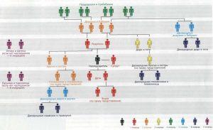 Как делиться наследство между наследниками первой очереди по закону