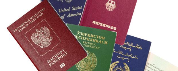 Двойное гражданство в российской федерации - особенности и возможности