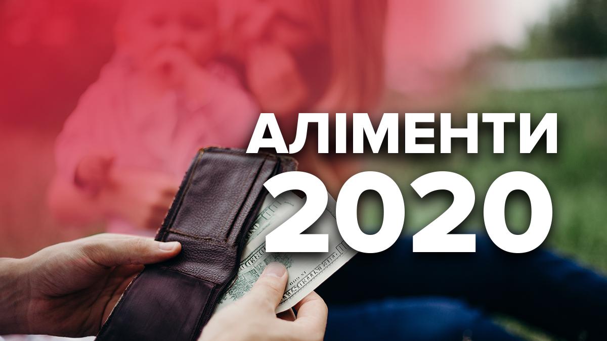 Алименты на ребенка в 2020 году