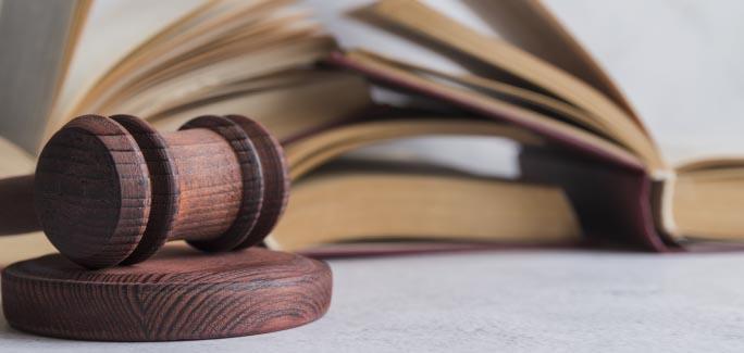 Наследники имущества первой, второй, третьей и последующих очередей по закону и по завещанию