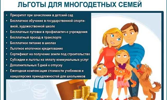 Какие выплаты можно получить от государства молодой семье в 2020 году