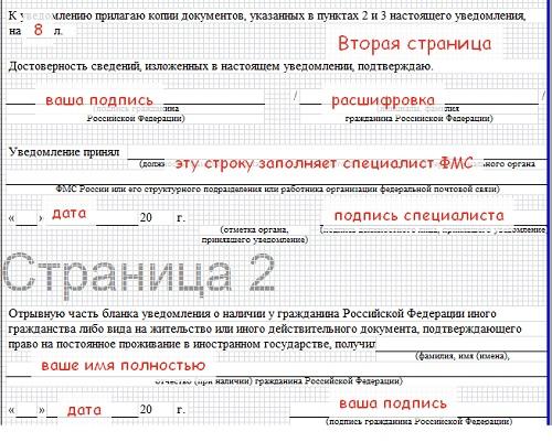 Образец заявления о двойном гражданстве в 2020 году (форма, бланк)