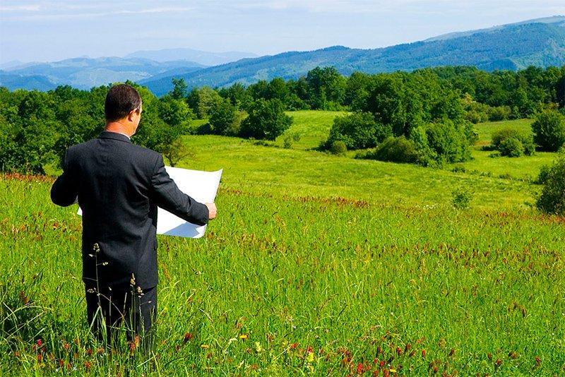 Земельный пай в наследство - как оформить, закон, порядок оформления, цена, вступление, без завещания, документы